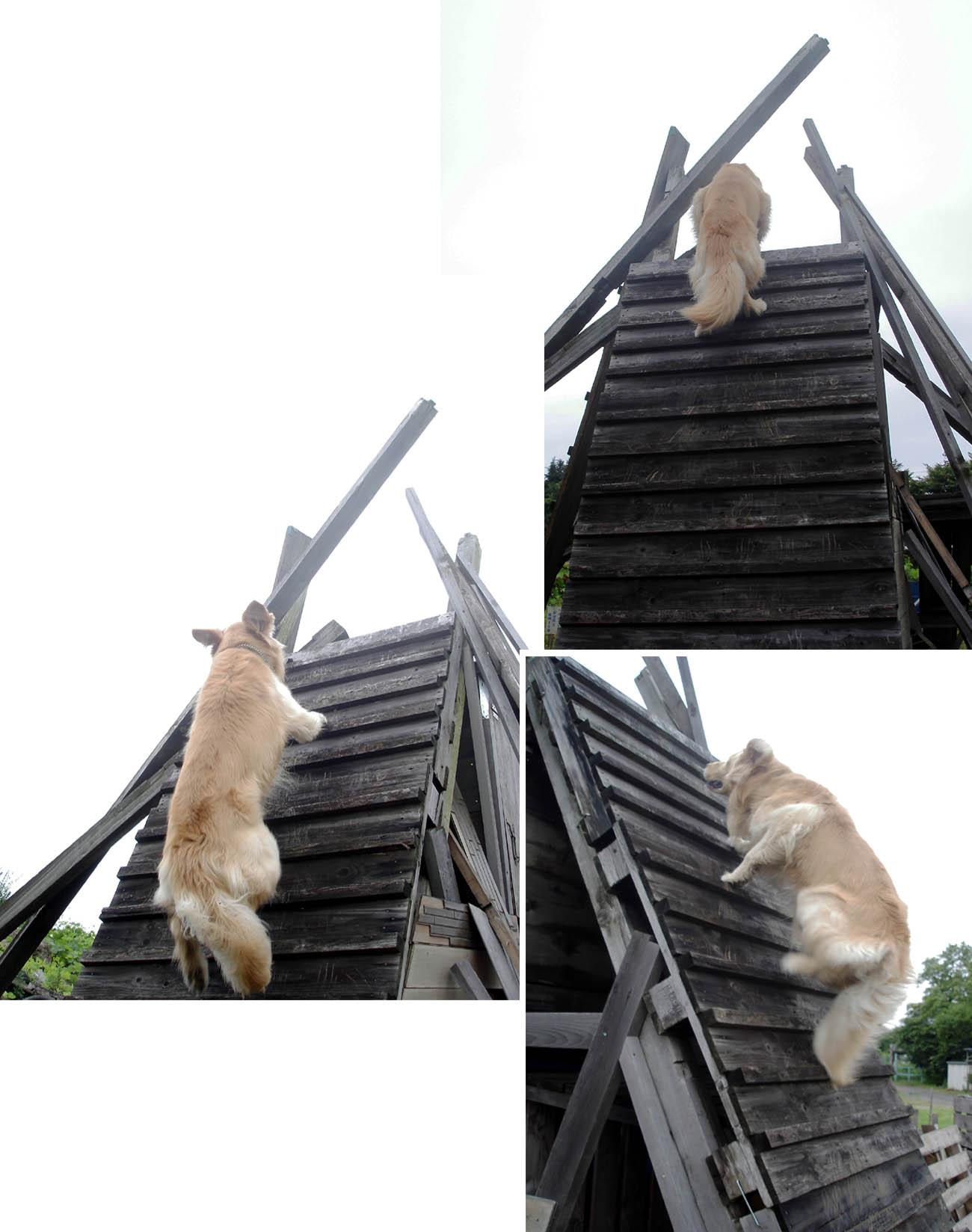 2009.06.21 チャンスのピラミッド登攀②