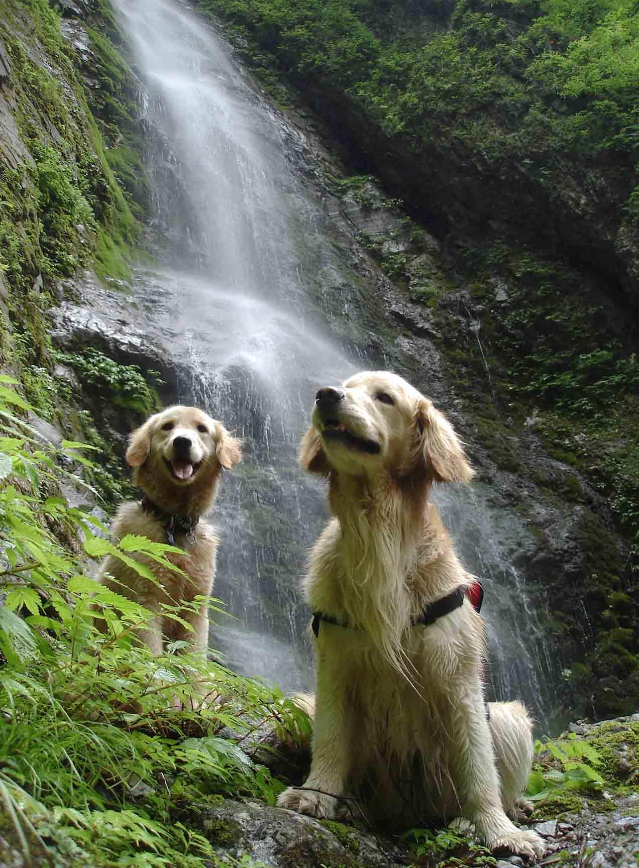 巫女淵の滝にて