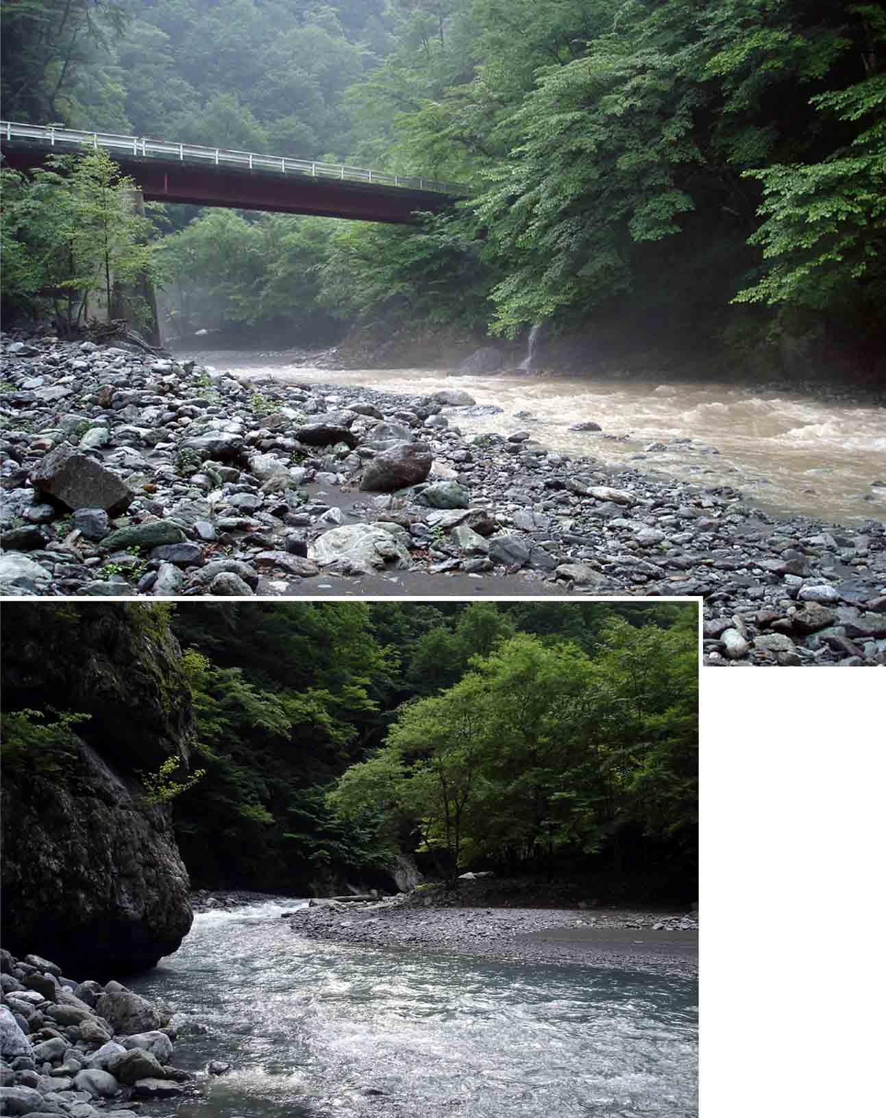 川の様子(19日15時20分と20日7時28分)