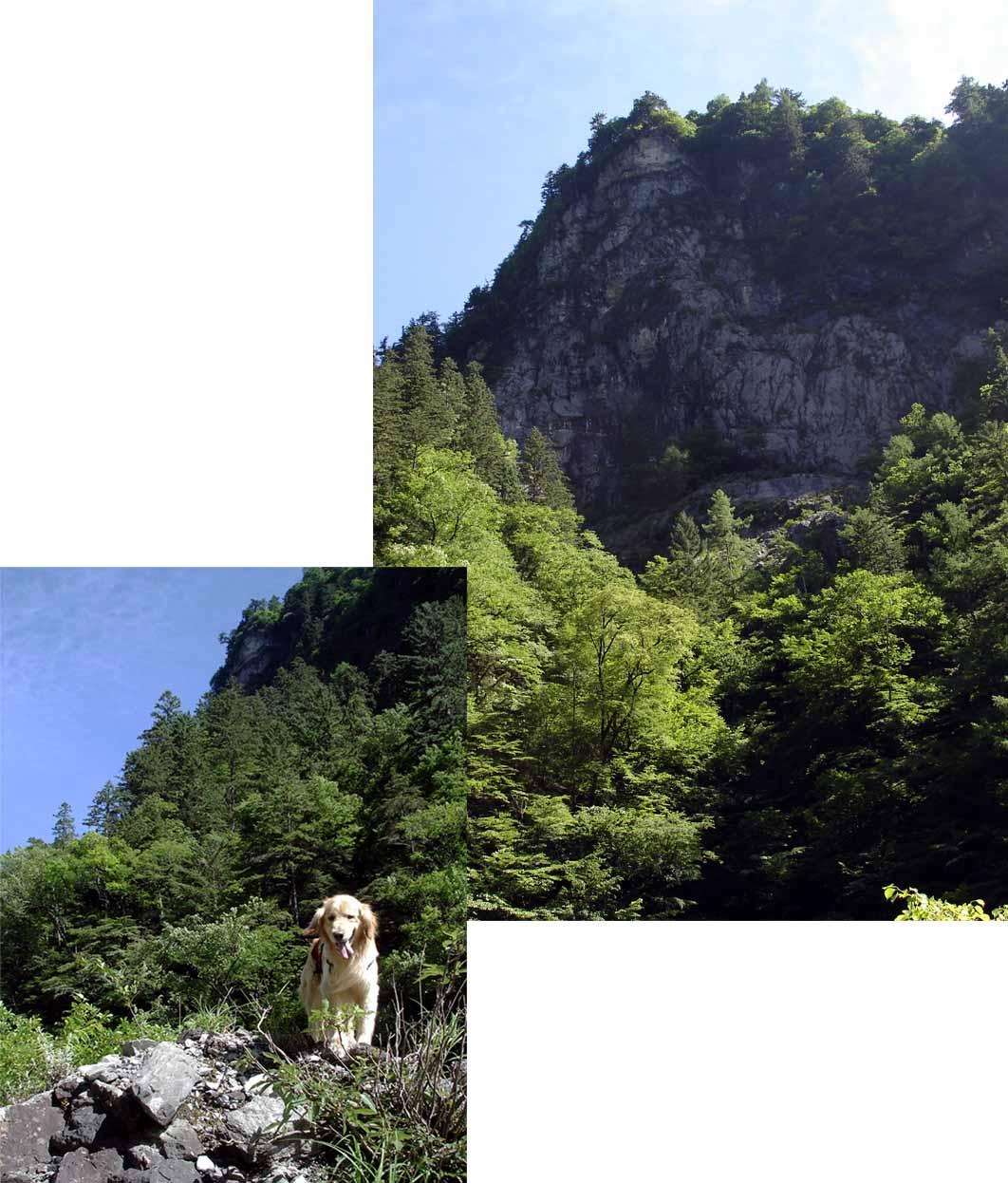 三峰川林道③ 巫女渕付近の対岸絶壁