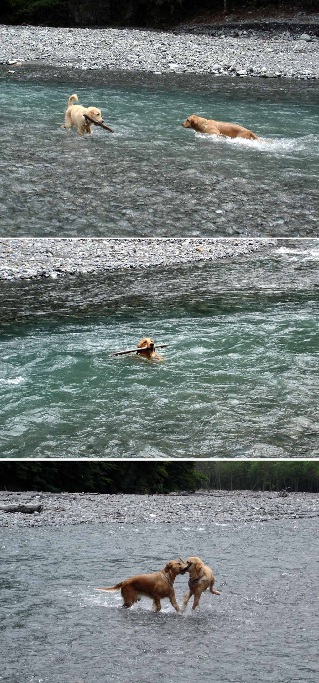 三峰川川遊び⑤
