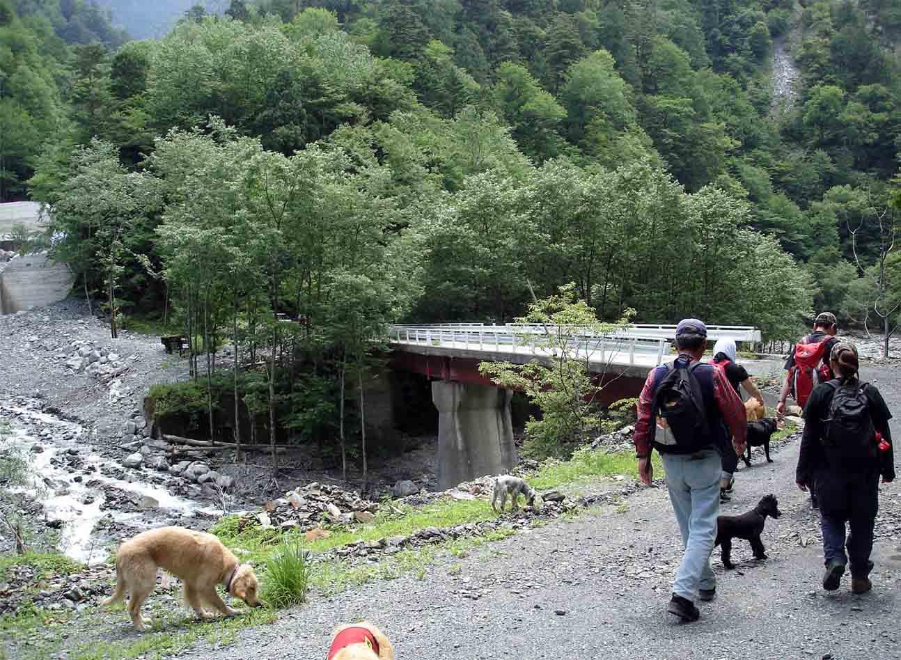 大黒沢脇の橋を渡って三峰川左岸へ