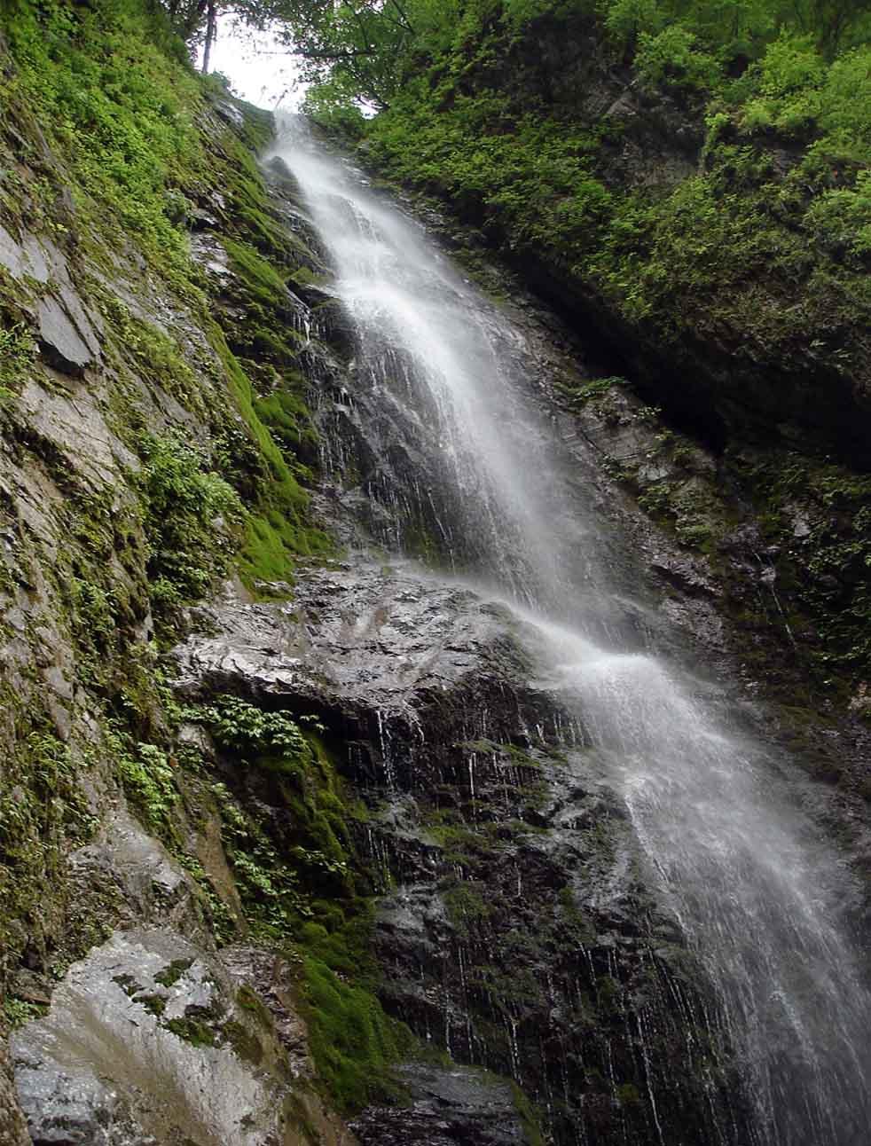 巫女滝を下から仰ぐ