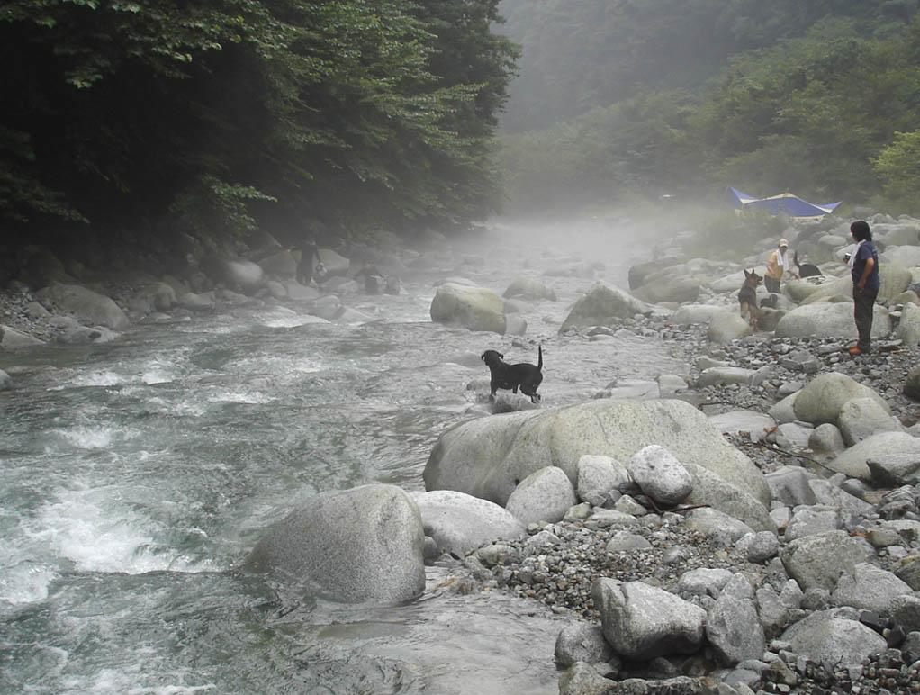 ⑧川遊び ①