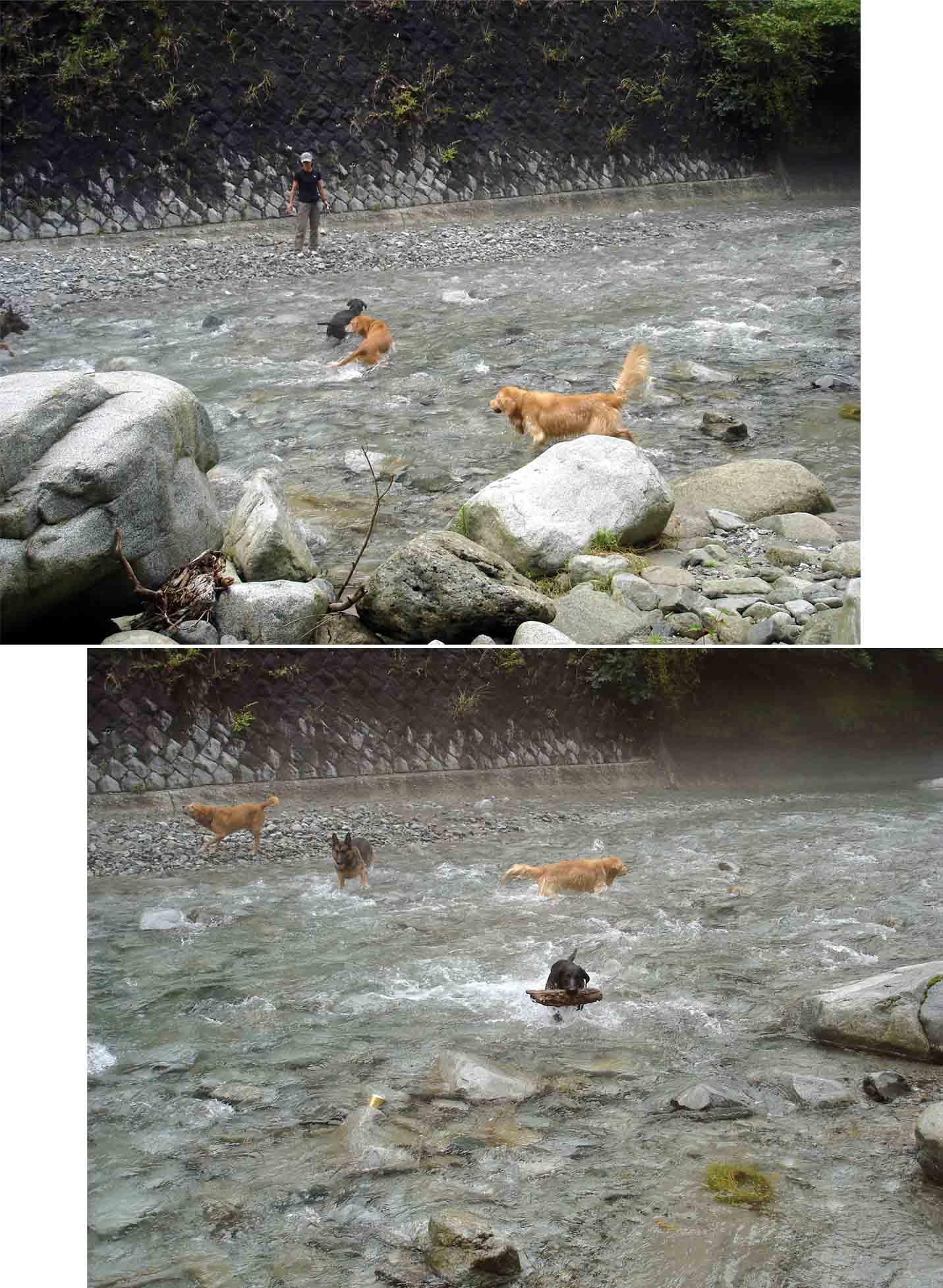 ⑱上流側で川遊び(2連)