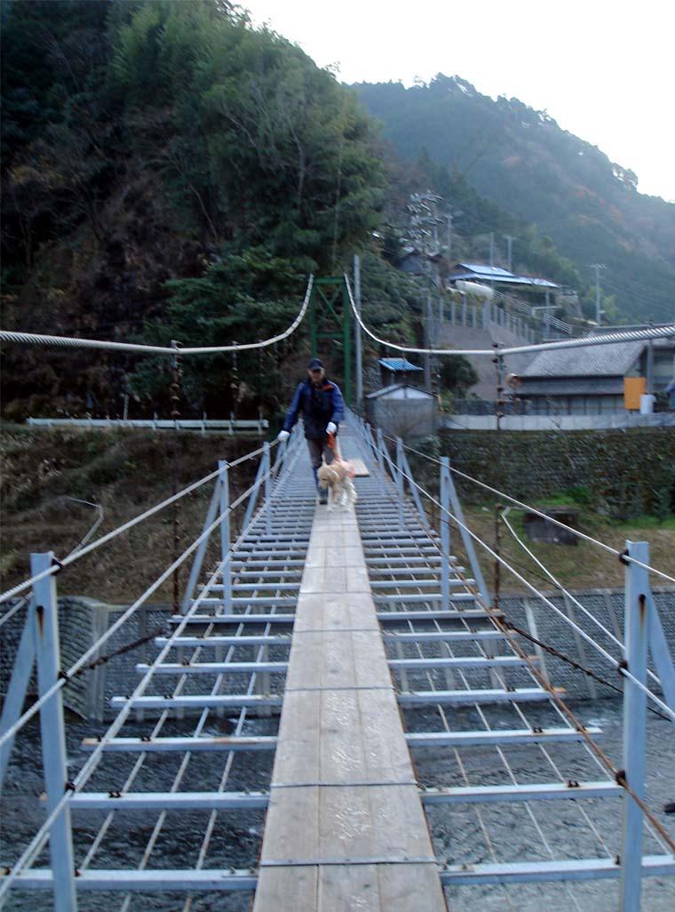 上渡の吊橋⑨ 翌日朝一緒に