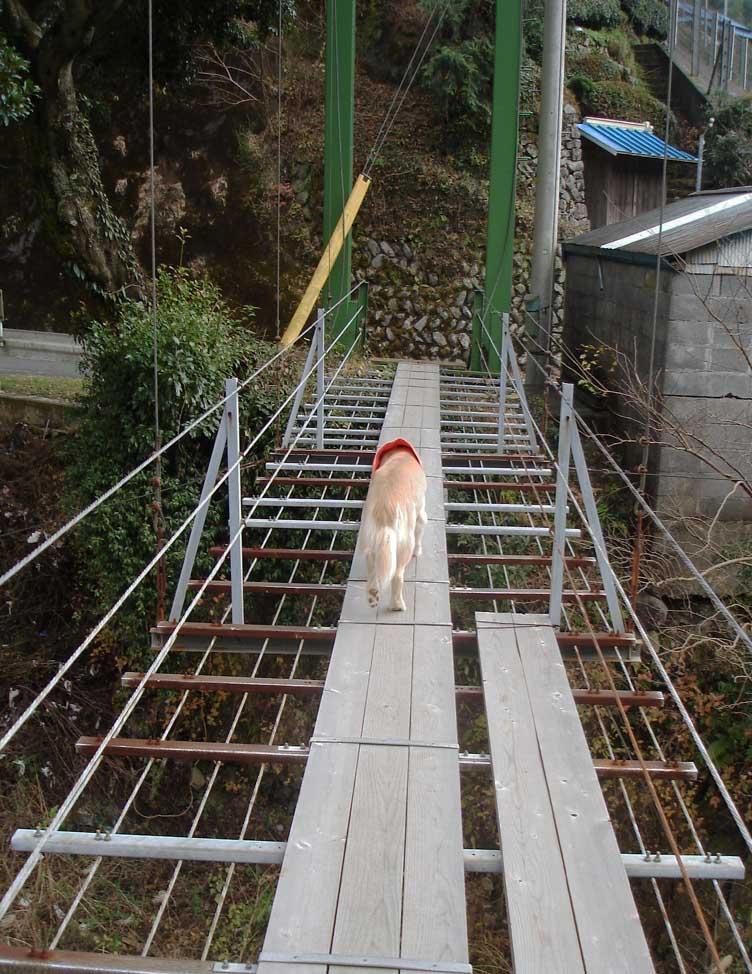 上渡の吊橋⑧ もうすぐだ