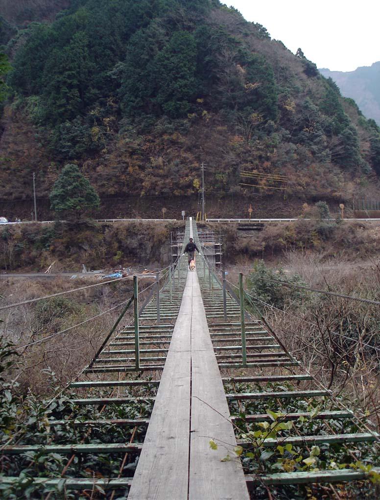 上渡の吊橋③ チャンスと渡る