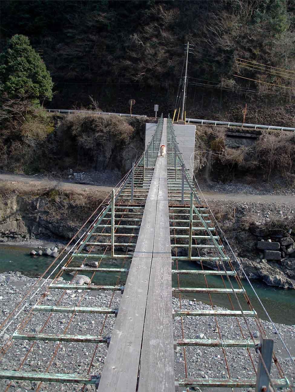 上渡の吊橋① ひとりで先に行けるぞ