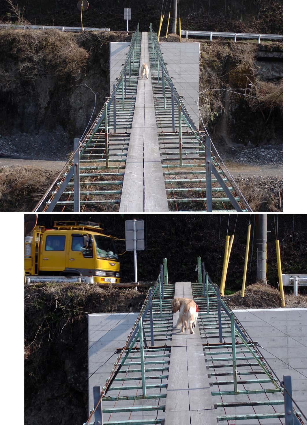 上渡の吊橋② もう平気だそ