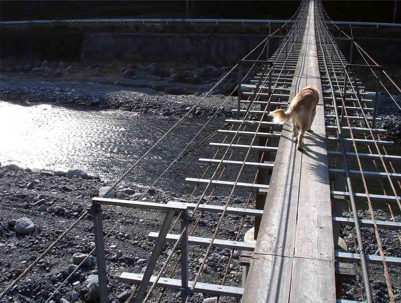 NHの吊橋⑥