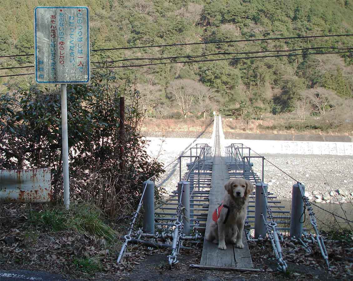 NHの吊橋⑩ 渡り口にて
