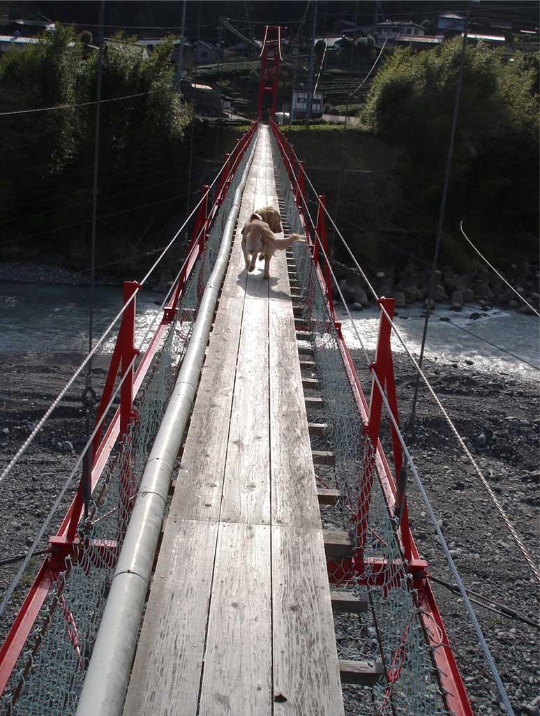 相淵の吊橋⑤