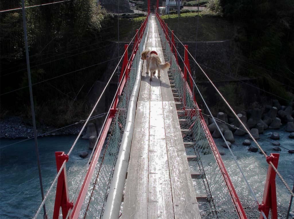 相淵の吊橋⑥