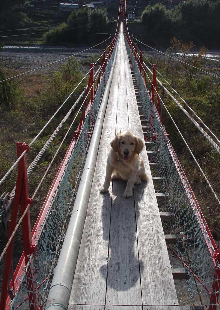 相淵の吊橋⑨