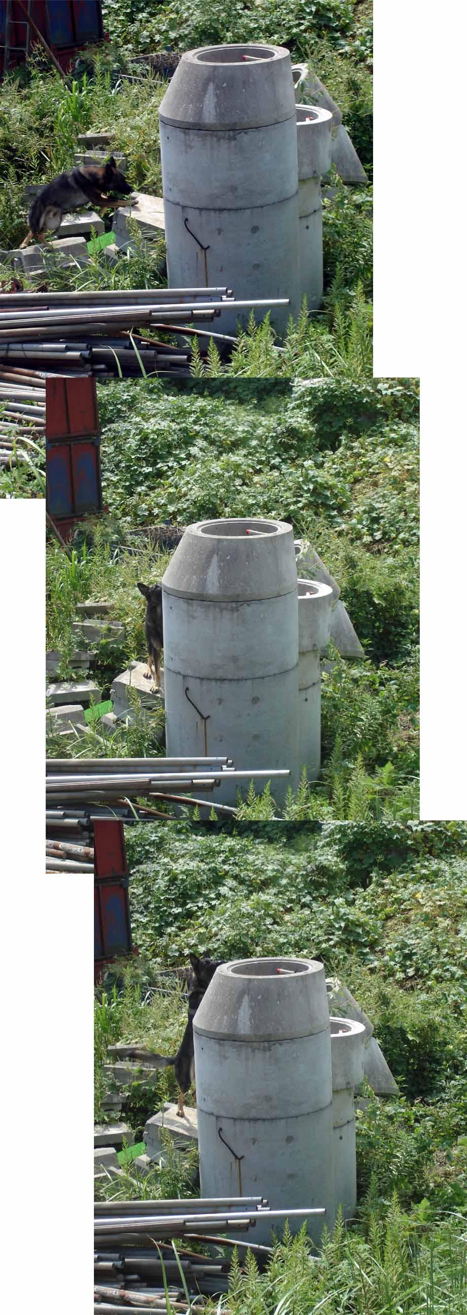 円筒柱捜索③(GS1)