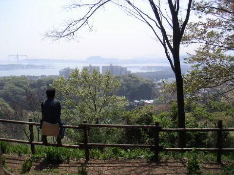 称名寺市民の森