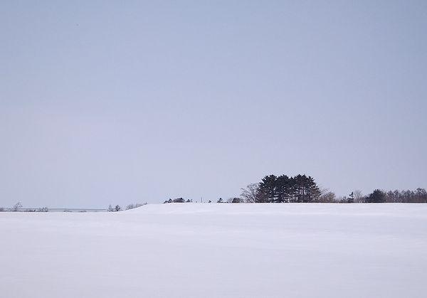 120301-2.jpg