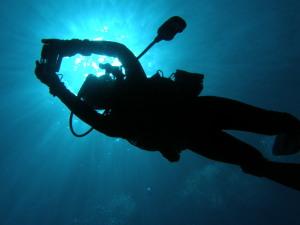 海中カメラマン