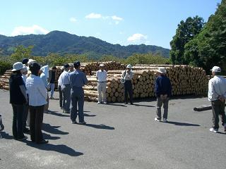木材市場①
