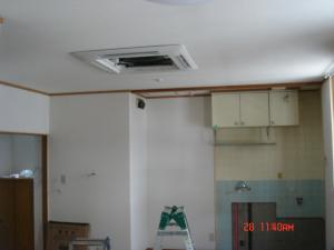 DSC05684_convert_20090929193758.jpg