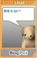 20070915204144.jpg