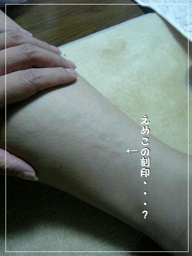 12.6.jpg