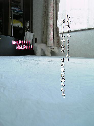 20060717234647.jpg