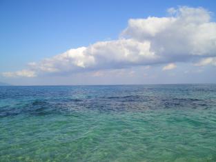 屋久島2008 116