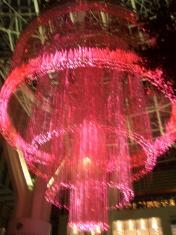 2008 12月 069