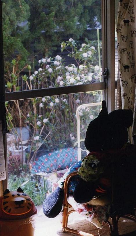 沈丁花の季節001