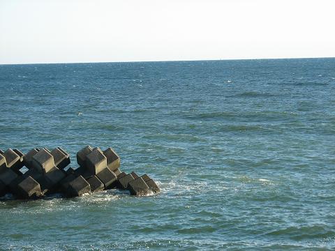 春の駿河湾
