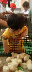 移動動物園⑤