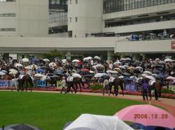 京都競馬場②