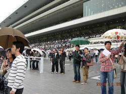 京都競馬場⑦