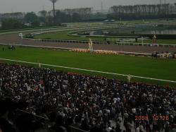 京都競馬場⑥