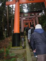 伏見稲荷神社⑥