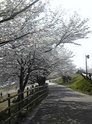 治水緑地公園②