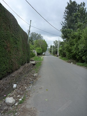 P1000234.jpg