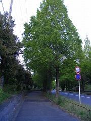 R0020663.jpg