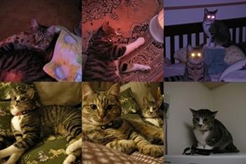 2007-10-8.jpg