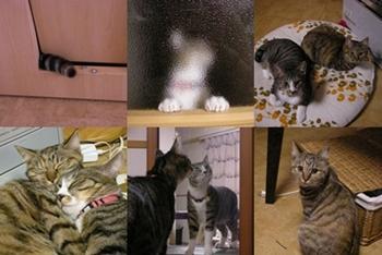 2007-11-2.jpg