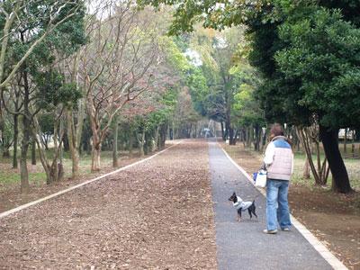 エコパーク内散歩