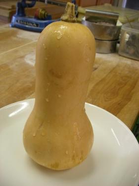 バターナッツ1.JPG