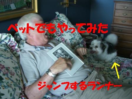 CIMG1692.jpg