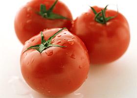 さっぱりとしたおいしさ トマト