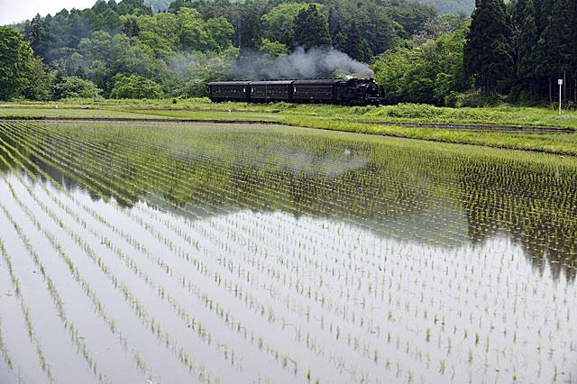 yasakanojouki