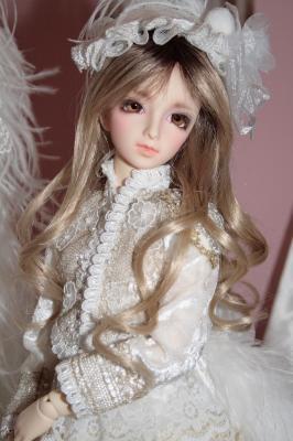 DPP_0361_20081209000515.jpg