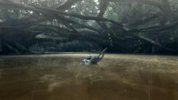 新フィールド:水没林
