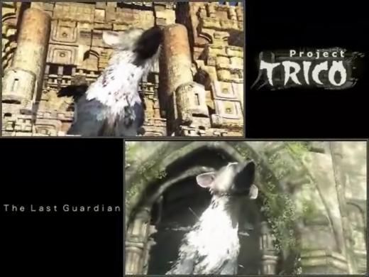 TRICO動画比較